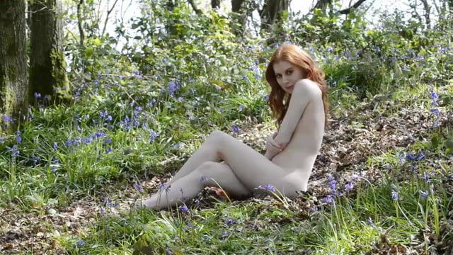 Misha in the Bluebells