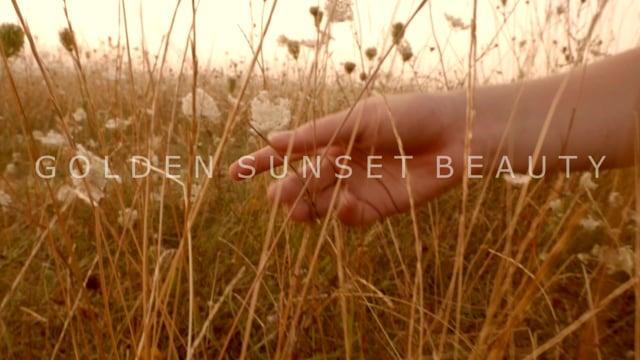Elle Beth Golden Sunset Beauty Art Nude NSFW