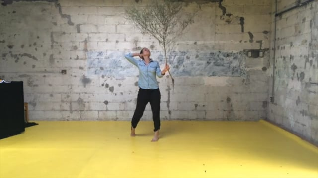 Video Studio Performance – This is Fake Expression Dance