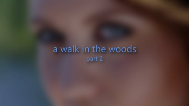 A Walk in the Woods Part 2